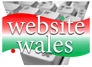 Website Design In Wales - Logo Image